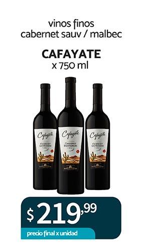 11-vino-cafayate-01
